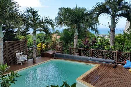Grande maison avec piscine, vue mer - Sainte-Clotilde - Casa