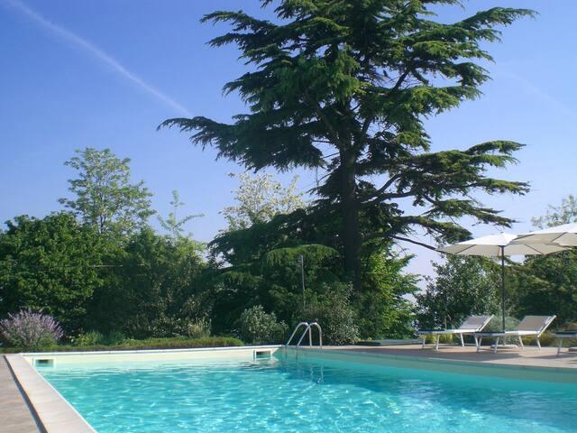 La piscina immersa in un rigoglioso giardino