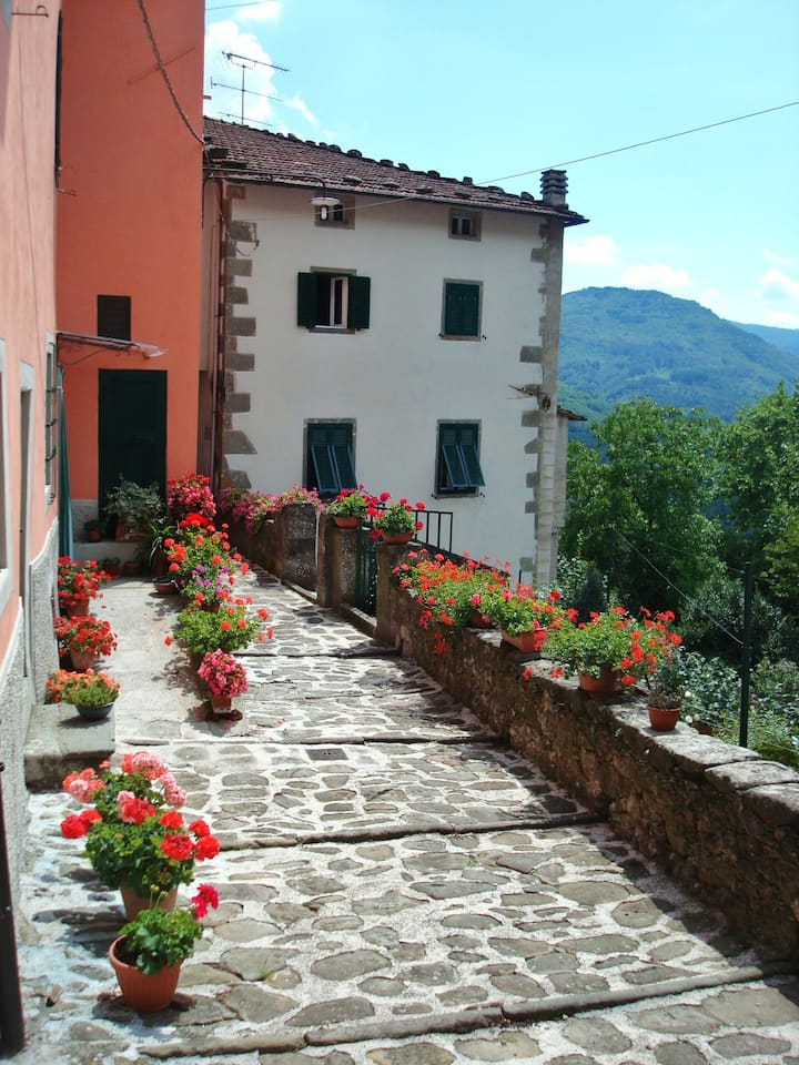 Nonno's House, Relax in Tuscany