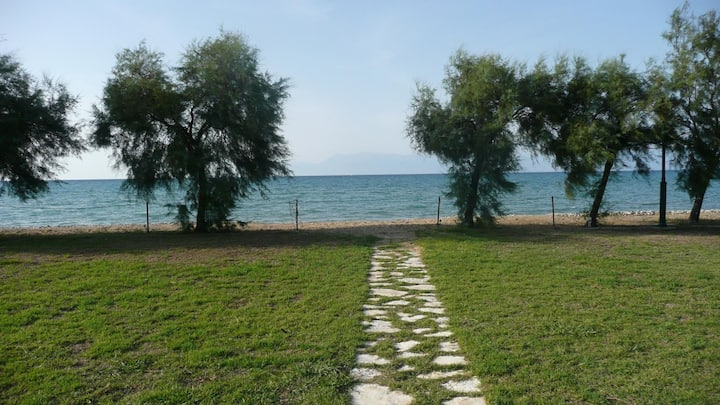 S&C Kosmos beach House with sea view