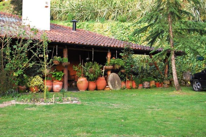 Casa dos Canais, River Cottage - Marco de Canaveses - Casa
