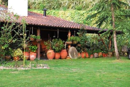 Casa dos Canais, River Cottage - Marco de Canaveses - Hus