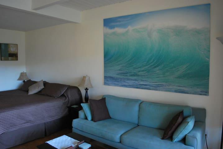 Kihei Maui Studio Condo, King Bed, from $60 *1
