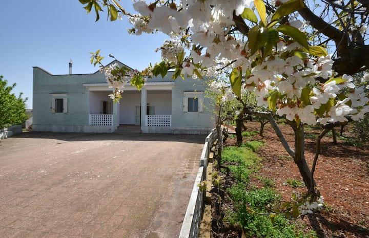 Villa con giardino e frutteto Ostuni