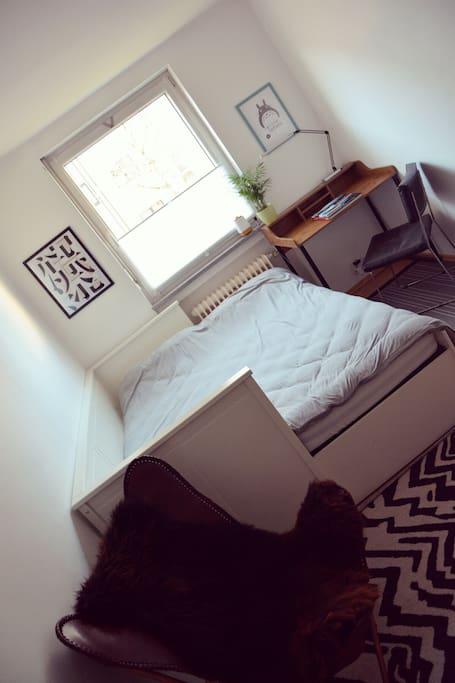 Mein Gastzimmer/ Room in the daytime