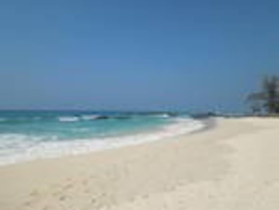 30 mins drive to the world #1 beach located at Kona coast