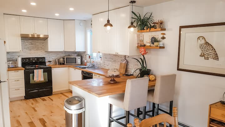Room in newly renovated, bright,open concept home.