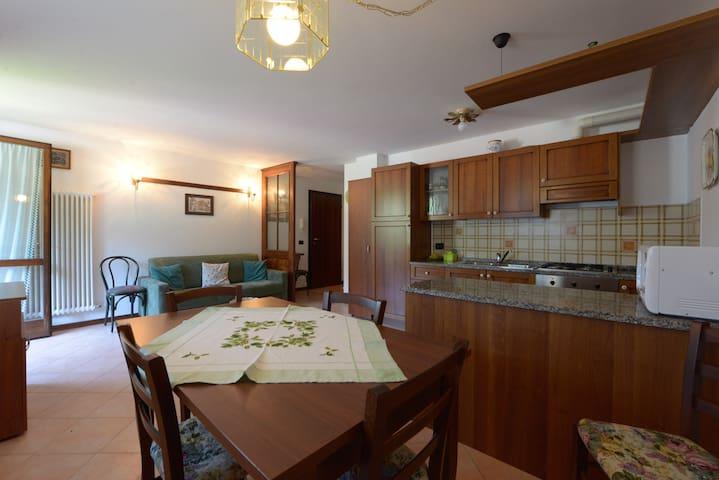 Panoramic apartment with lake view - Auronzo - Apartment