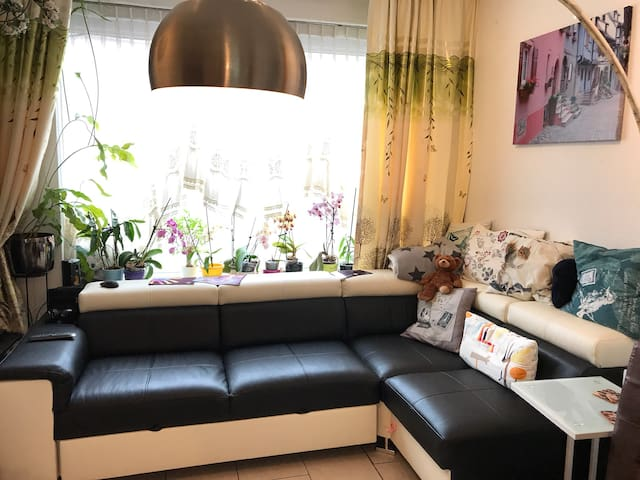 Comfortable room near center near moerwijkstation
