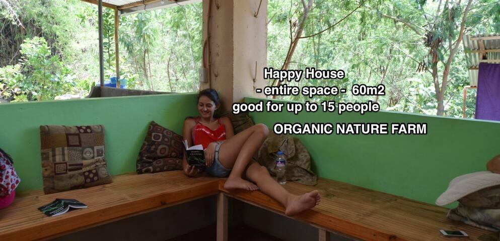 Organic Farmstay: Entire Space > Happy House Farm