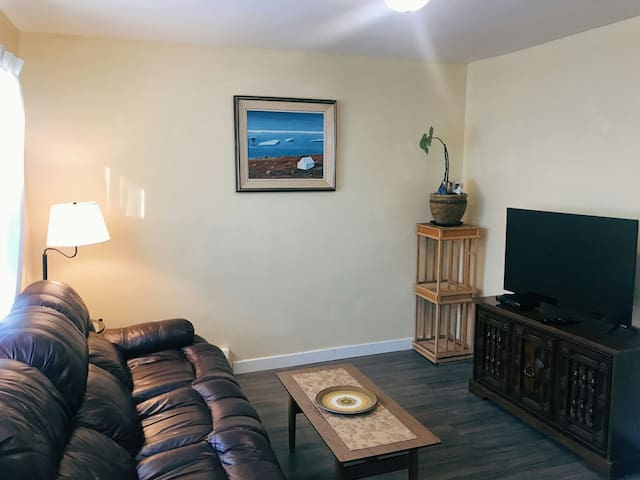Newly renovated and cozy apartment in downtown