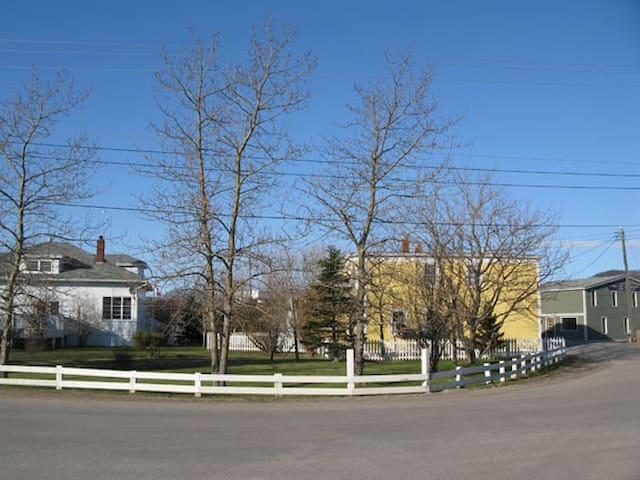 Downtown Woody Point, just down the street