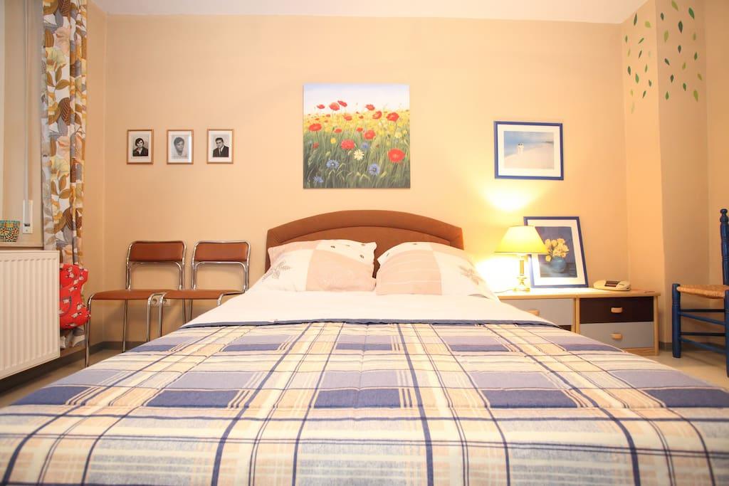 1 nice room with terrace/garden