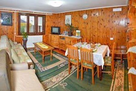 Apartment Marjanovic Zlatibor 201 - Uzice - Διαμέρισμα