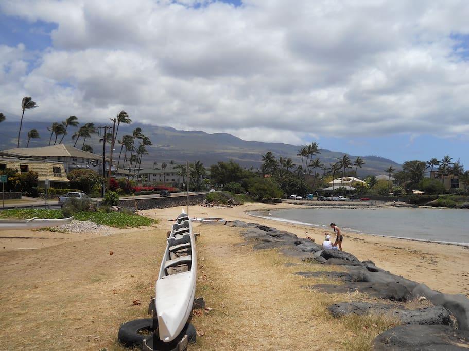 Kalama Park and Cove Beach across the street