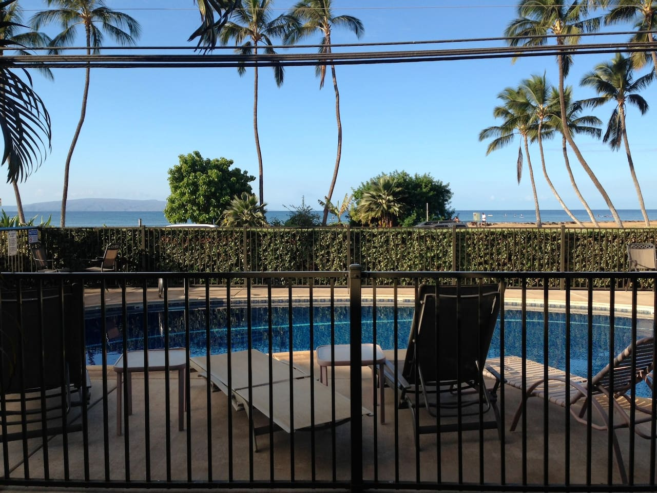 Oceanview and Pool steps from apartment