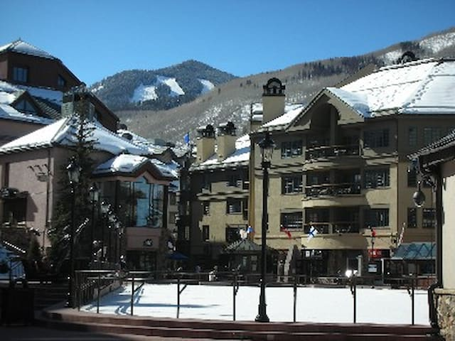 Beaver Creek, CO Feb 13-20,2016! - Beaver Creek - Villa