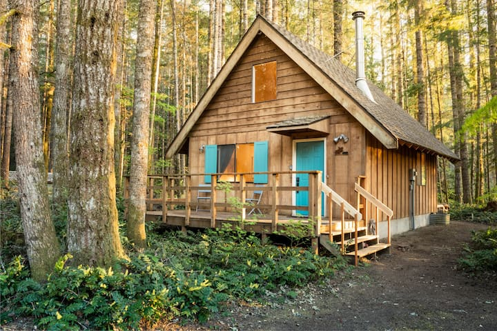 Mt Rainier Loft Cabin with WiFi near National Park