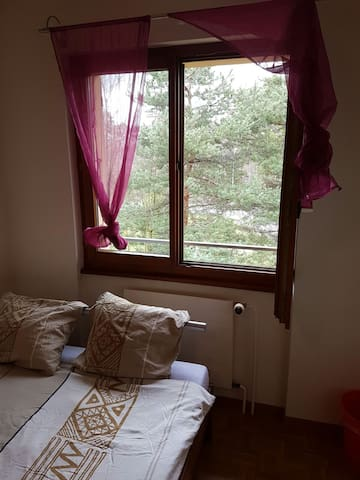 Belle chambre lieu calme - Veyrier - Apartemen