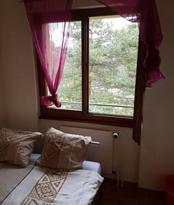 Belle chambre lieu calme - 韦里耶(Veyrier) - 公寓