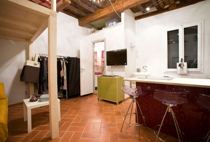 Pitti apartment in the city center - Firenze - Lejlighed