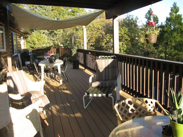 Quiet, new log cabin, full breakfast, deck,view. - Running Springs - Bed & Breakfast