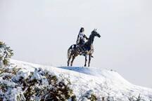 Gaelic Chieftan Sculpture Boyle