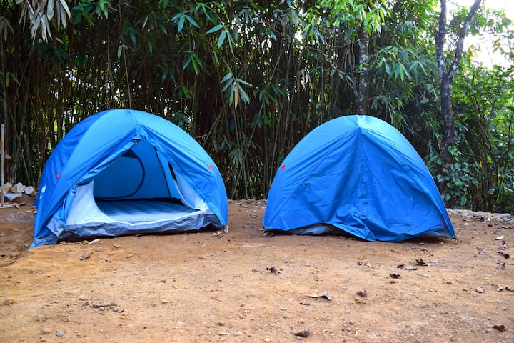 Tents in Cardamom Plantation