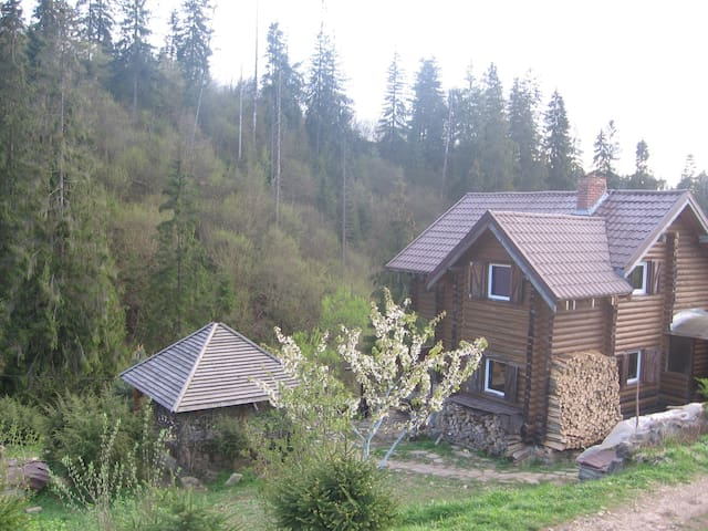 wooden log cabin in the Carpathian mountains - Slavs'ke