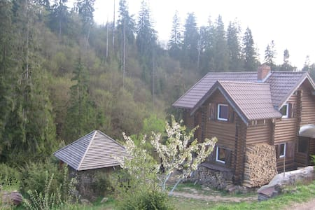 Wooden log cabin in the Carpathian mountains