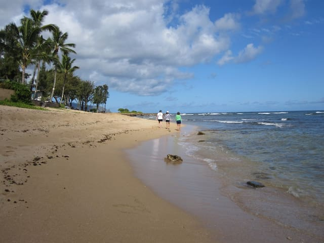 North Shore Beachfront - Haleiwa - Apartment