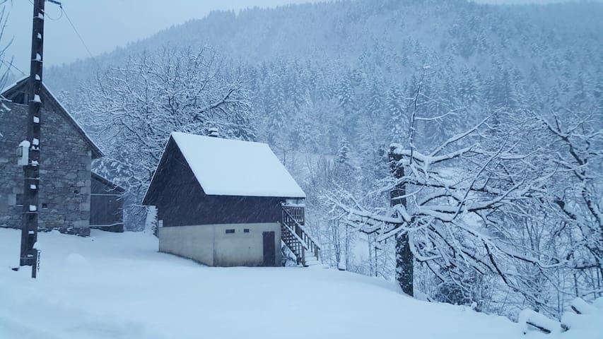 chalet (6 pers) - Parc naturel de Chartreuse - Saint-Pierre-d'Entremont - Hytte (i sveitsisk stil)