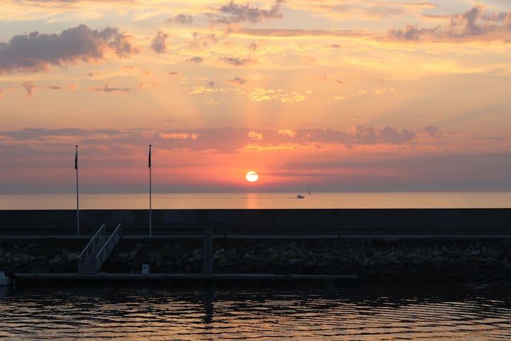 2 pièces pieds dans l'eau vue mer imprenable