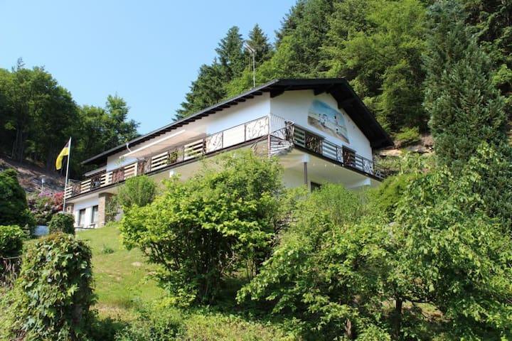 Ferienwohnung Waldesruh - eine Oase der Ruhe ! - Eitorf