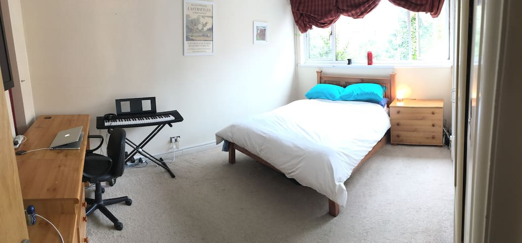 Huge Private Double Room in Islington Zone 2! - London - House