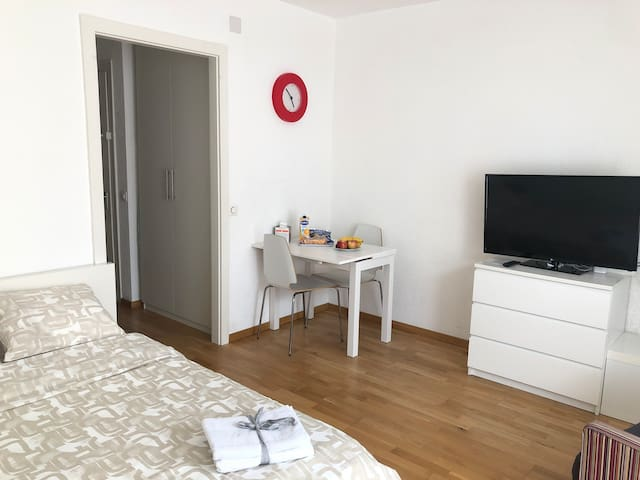 Studio (30m2) in Rive Gauche near fountaint
