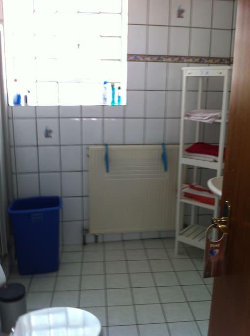 Helles,geräumiges Duschbad mit Toilette
