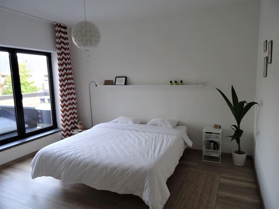- the guestroom -