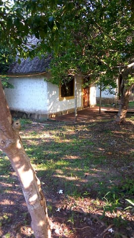 Wasini Dolphin Divers Lodge