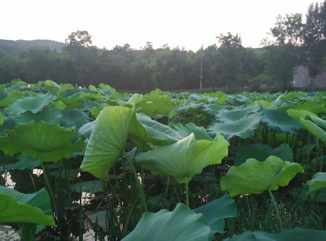 感受乡村慢生活 乡村 独栋 自建房屋 可钓鱼,爬山 采摘 我爸妈非常好客 - Chengdu - Casa