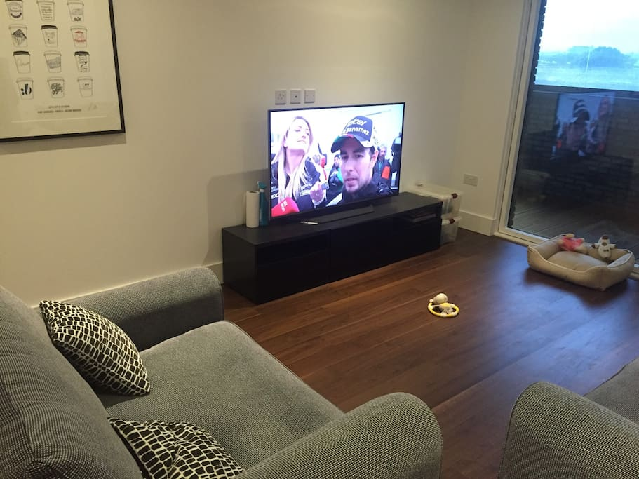 55 inch TV with 4 seater sofa and extra large single seater