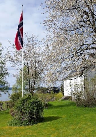 Farm by the sea. Den Arme Ridder, Kjørsvik Øvre. - Tornes i Romsdal - Appartement