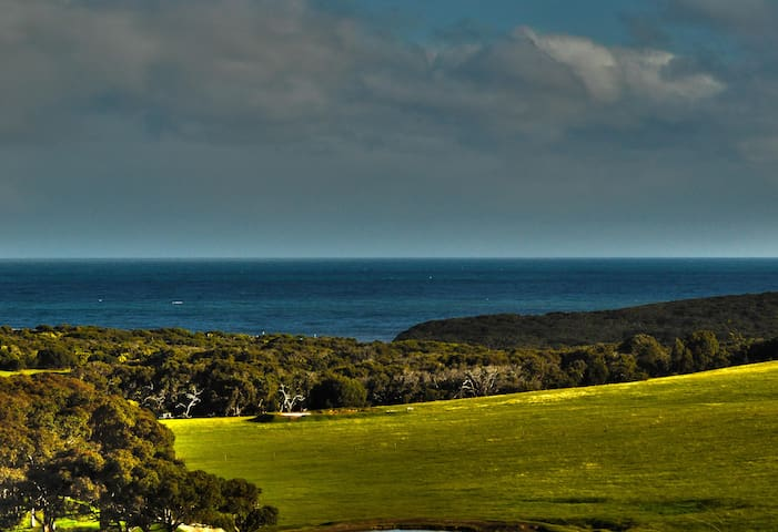 Bells Beach Views