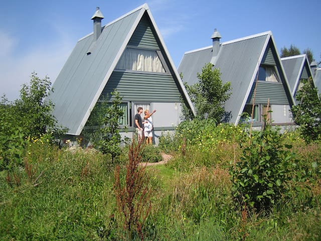 Pingo House - Twijzelerheide - Cabane