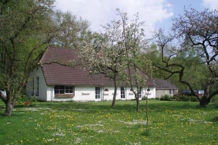 Springtime in Drenthe - Holsloot - House - 2