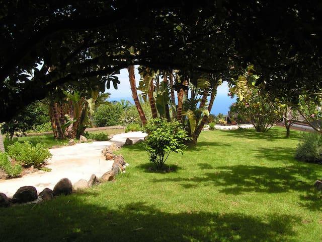 Apartment in bio-finca Canarias - Santa Cruz de la Palma - Apartamento