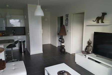 Magnifique T2  St jean de luz 42 m2 - Saint-Jean-de-Luz - Apartment