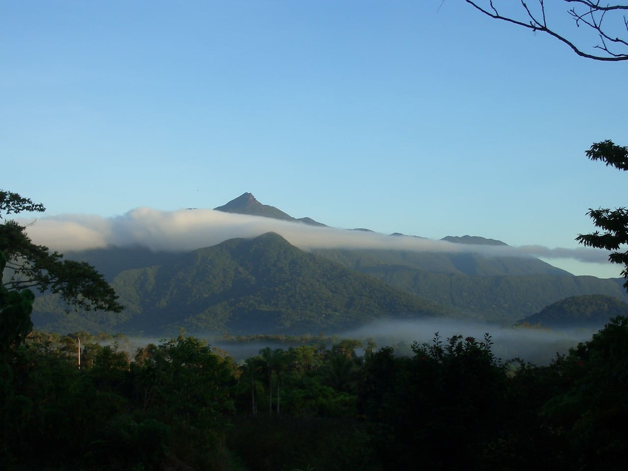 The view from the breakfast table...beautiful Thornton Peak in the Daintree World Heritage area.