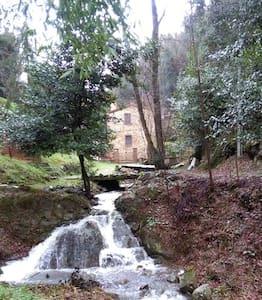 Mulino Leonardo - Lamporecchio - San Rocco