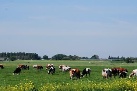 Country side farmlogies 1/logies - Alphen aan den Rijn